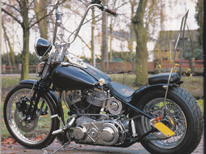 Project-b Panhead img s